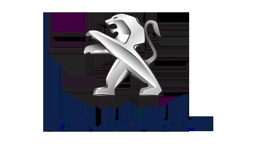 Ersatzteile PEUGEOT